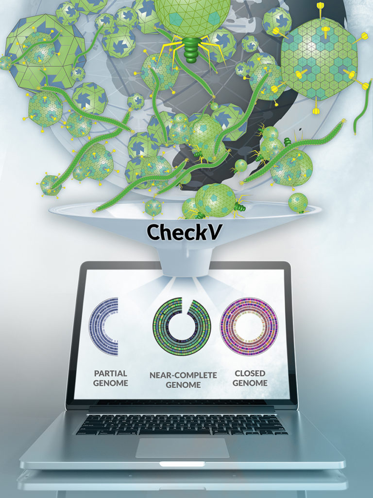 An Automated Tool for Assessing Virus Data Quality